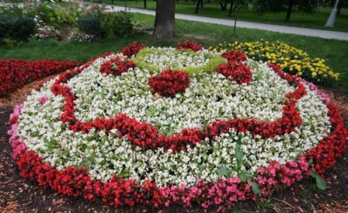 Дизайн цветника перед домом из многолетников. Однолетники или многолетники — критерии выбора